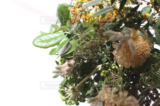 インテリア,花,植物,花束,黄色,黄色い花,プレゼント,清々しい,朝,植物のある暮らし,モーニング,グリーン