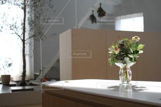 インテリア,植物,フラワー,デザイン,オリーブ,お洒落,デザイナー