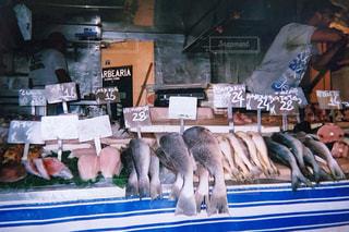 海,夏,魚,屋台,フィルム,フィルム写真,ブラジル,フィルムフォト