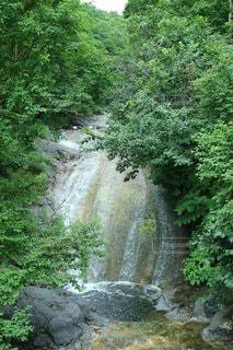 森の中の大きな滝の写真・画像素材[3557810]