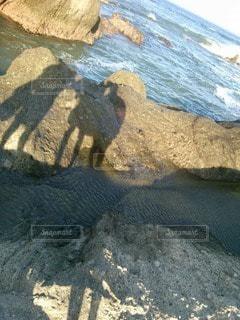 海の人影の写真・画像素材[3557861]