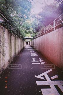 屋外,レトロ,道,トンネル,ナチュラル,フィルム,自然光,フィルム写真,フィルムフォト