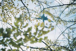 空の写真・画像素材[2469963]
