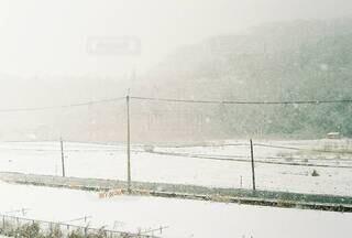降雪で真っ白の写真・画像素材[4147973]