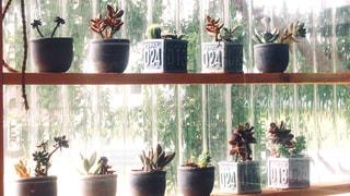 テーブルの上の花瓶の写真・画像素材[2722978]