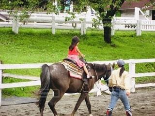 はじめての乗馬体験の写真・画像素材[2581272]
