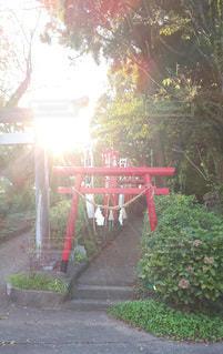 風景,空,夕日,太陽,赤,景色,光,熊本,日本,九州,夏の夕暮れ,菊地神社
