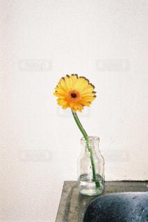 テーブルの上に花瓶に黄色い花の写真・画像素材[1214467]