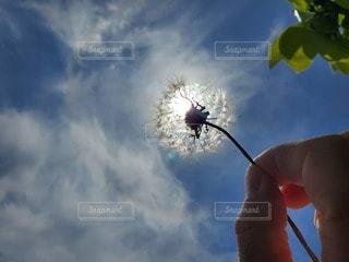 曇りの日に空を飛んでいる人の写真・画像素材[3210869]