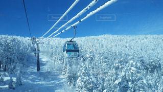 晴天,雪山,スキー,スノボ,ゴンドラ,スノーボード,樹氷,嬬恋,山奥,冬の思い出