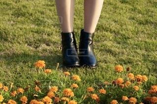 草の中に立っている小さな女の子の写真・画像素材[2700109]