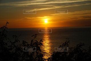 海,空,太陽,雲,水面,景色,光,観光,キラキラ,旅行,太陽光,日の出,サンロード,草木,自然光,早起き