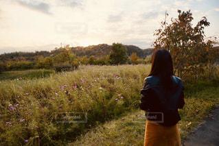 草原に立っている人の写真・画像素材[2892499]
