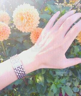花を持つ手の写真・画像素材[3787040]