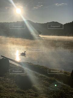 自然の写真・画像素材[2665317]
