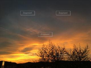 自然,風景,空,太陽,夕暮れ,光