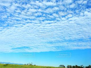 河川敷の空の写真・画像素材[2476285]