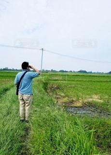 野鳥観察をしてる夫の写真・画像素材[2586809]
