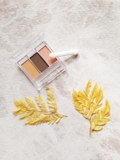 葉,爽やか,床,シンプル,美容,俯瞰,コスメ,化粧品,アイシャドウ