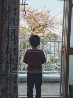 窓の外は春の写真・画像素材[2513355]