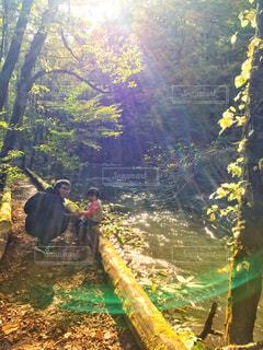奥入瀬渓流で親子でお散歩の写真・画像素材[2625195]