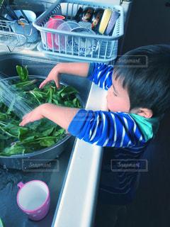 ほうれん草を洗う子どもの写真・画像素材[2673777]