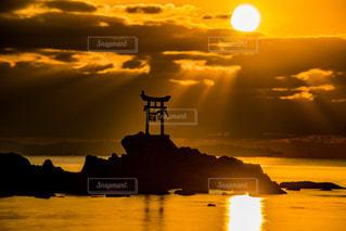 風景,空,鳥,太陽,ビーチ,雲,水面,光,日の出