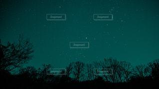 星空の写真・画像素材[3373263]