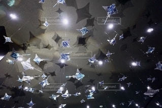 マンタが泳ぐ天井の写真・画像素材[2646094]