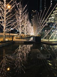 夜,屋外,綺麗,水面,樹木,イルミネーション,都会,キラキラ,照明,景観,アンバサダー,グランフロント大阪,シャンパンゴールド