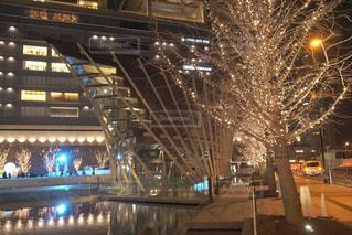 建物,夜,屋外,綺麗,樹木,イルミネーション,都会,キラキラ,高層ビル,明るい,アンバサダー,グランフロント大阪,シャンパンゴールド