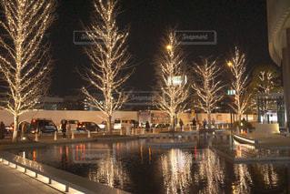 空,冬,夜,屋外,綺麗,水面,反射,樹木,イルミネーション,キラキラ,明るい,アンバサダー,グランフロント大阪,シャンパンゴールド