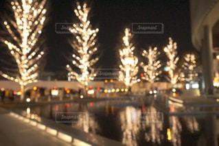 夜,綺麗,水面,反射,樹木,イルミネーション,キラキラ,明るい,アンバサダー,グランフロント大阪,シャンパンゴールド