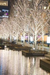 屋外,綺麗,水面,反射,樹木,イルミネーション,キラキラ,アンバサダー,グランフロント大阪,シャンパンゴールド