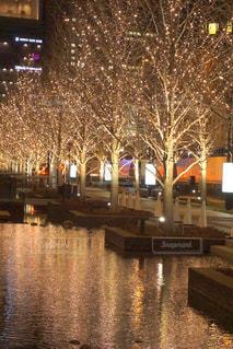 空,夜,屋外,綺麗,水面,樹木,イルミネーション,都会,キラキラ,明るい,アンバサダー,グランフロント大阪,シャンパンゴールド