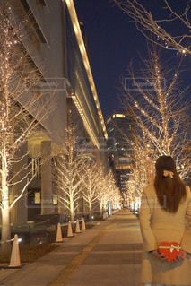 女性,恋人,1人,冬,夜,樹木,イルミネーション,ハート,ロマンチック,バレンタイン,明るい,待ち合わせ,告白,アンバサダー,グランフロント大阪,シャンパンゴールド