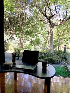 自然,木,緑,日光,田舎,光,樹木,パソコン,背中,ノートパソコン,PC,ビジネス,うしろ姿,自然光,リモートワーク,ビジネスシーン
