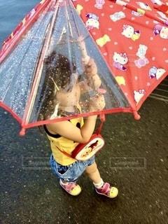 雨の写真・画像素材[2607533]