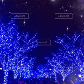 青の洞窟の光の写真・画像素材[2630455]