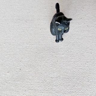 猫の置物を真上からの写真・画像素材[2985448]
