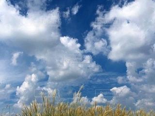 空の雲の群の写真・画像素材[2792031]