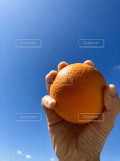 オレンジを持つ手の写真・画像素材[2925989]