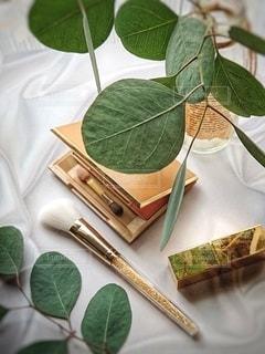 屋内,緑,瓶,テーブル,観葉植物,美容,コスメ,化粧品,ゴールド,ユーカリ,リサイクル瓶