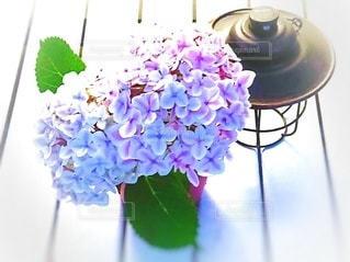 庭の紫陽花をガーデンテーブルへの写真・画像素材[3030129]