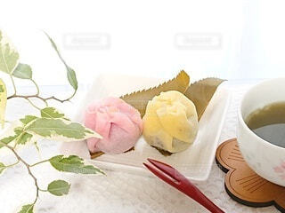 春の和菓子の写真・画像素材[4330781]