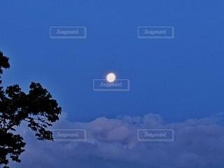 自然,風景,空,木,屋外,雲,青,景色,樹木,月,満月
