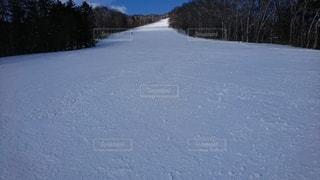 自然,アウトドア,スポーツ,雪,屋外,山,丘,樹木,人物,スキー,ゲレンデ,レジャー,斜面