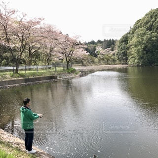 春夏秋冬〜春!の写真・画像素材[3737485]