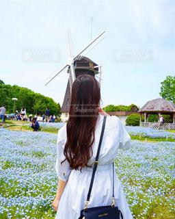 彼女の後ろ姿 ロングヘアーの写真・画像素材[2514669]