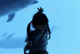 イルカを捕まえようとする娘の写真・画像素材[2515321]